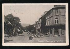 Wales Brecknockshire LLANWRTYD WELLS Dolecoed 1925 Rd PPC local pub Pyrtherch