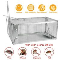 "Humane Small Live Animal Control Steel Trap Cage 10.8""x5.5""x4.3"" Squirrels Mice"