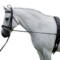 Black Horse Neck Stretcher Horse Training Grooming Tools Equestrian Supplies