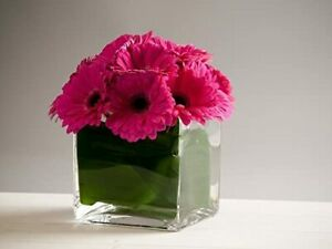 Glass Rectangular   Cube Trough Vase - Orchid Planter Flowers -  Choice of Sizes