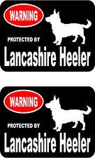2 protected by Lancashire Heeler dog bumper home window vinyl decals stickers