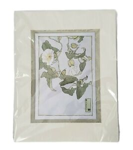 Hannah Overbeck Bindweed Print Matted Ready to Frame White Flowers Leafy