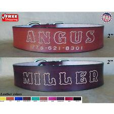 Custom Dog Collars for Pitbulls - Dog Collar with Name - Xxl Leather Dog Collar