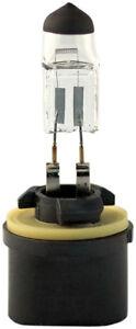 Fog Light Bulb-SLE Eiko 880-BP