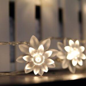 Battery Powered 40 LED 13ft Warm White Lotus Flower LED String Fairy Lights
