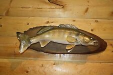 Real Skin Mount Walleye Pike Musky Bass Perch Sauger Fish Taxidermy WY1