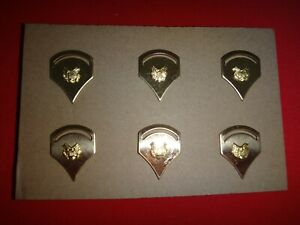 3 Pairs Of US Army SPECIALIST 2nd Class F-5 Metal Badges + Clutchback Pins