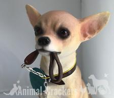 Adorable realistic large 18cm Chihuahua ornament figurine, Leonardo, gift boxed.