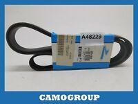 Belt Service V-Ribbed Belt Dayco Fiat Ducato Vauxhall Astra Corsa Tigra 6PK1805
