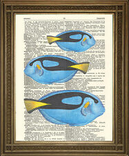 TROPICAL FISH DICTIONARY PRINT: Blue Seaside Art Wall Hanging on Vintage Paper