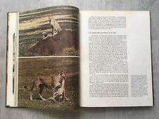 Enciclopedia Salvat de la fauna de Felix Rodriguez de la Fuente -tomo 1- Africa