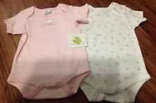 NWT Starting Out Baby Girls 6 Month Kitty Cat Bodysuit Set~Super Sweet~Gift