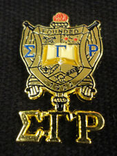 Sigma Gamma Rho New Sandblast Color Crest Lapel Pin