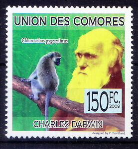 Comores 2009 MNH, Charles Darwin, Vervet monkey, Wild Animals, Explorer (O28)