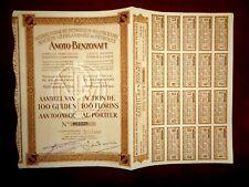 Nederlandsche Petroleum Anoto Benzonaft Share certificate 1922
