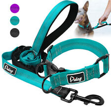 Durable Nylon Quick Fit Dog Collar and Bungee Lead Training Reflective Purple