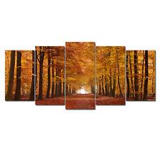 Framed Huge Canvas Print Pic Wall Art Home Decor Brown Woods Forest Landscape