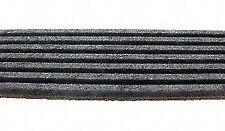 ArmorMark by Cadna 955K7  Premium Multi-Rib Belt