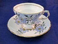 VINTAGE ROSINA TEA CUP AND SAUCER - # 4899 - MADE IN ENGLAND  UNUSUAL DECORATION
