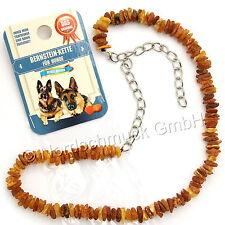 Bernsteinkette Hund Bernstein roh Hundekette Halsband raw amber cognac 50-68 cm