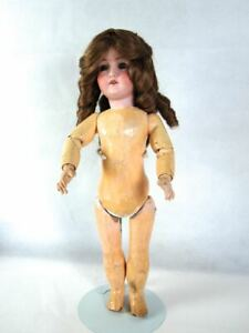 """German Bisque Head Doll, composition body, glass eyes, 17.5"""" tall, tlc"""