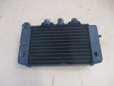 Radiateur d'eau gauche pour Honda 650 Africa twin - XRV - RD03