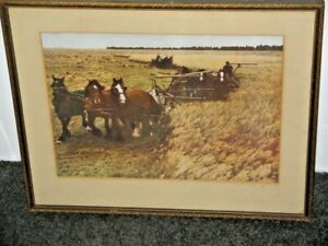 Early Farming Practices In Nelson New Zealand Photographic Art Framed Draught Ho