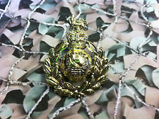 Royal Marines Cap Badge Queens Crown RM (Light)