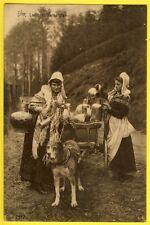 cpa BELGIQUE Métier Trade LAITIERES DAIRY Attelage de Chien Dogcart Hondenkar