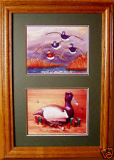 Ringneck Duck Decoy Flying Ring Bills Ducks Unlimited Edition Diving Ducks Look