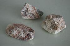 acuario natural Rosa Nube Roca x 3 pedazos Pequeños Adecuado Para Acuarios rcb1l