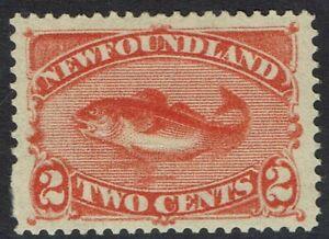 NEWFOUNDLAND 1897 COD FISH 2C