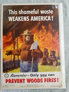 Vintage Smokey the Bear poster - 1951 Indiana Forestry Division