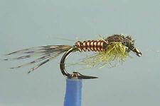 1 x Mouche peche Nymphe CUIVRE OLIVE H14/16/18 fly fishing copper fliegen mosca