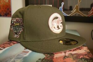 CHICAGO CUBS PINK MARTINI Olive  FITTED New Era HAT CLUB SPORTSWORLD 165