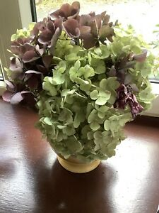 Dried Hydrangea Flowers/Blooms/Heads Natural Bunch Floral/Florist Arrangement