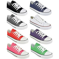 LADIES WOMENS CANVAS LACE UP PLIMSOLL FLAT GYM SHOES SNEAKERS TRAINER PUMPS SIZE