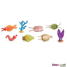 Cambrian Life Toob/Safari Ltd/toob/anomalocaris/ottoia/vauxia/sanctacaris