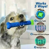 Pet Dog Bone-shape Toothbrush Brushing Chew Toy Stick Teeth Cleaning Oral Care