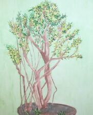 Vintage watercolor painting still life with bonsai