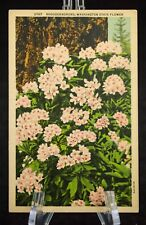 Postcard Rhododendrones Washington State Flower WA Linen