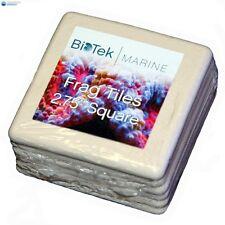 """New listing BioTek Marine 2.75"""" Square Frag Tiles"""