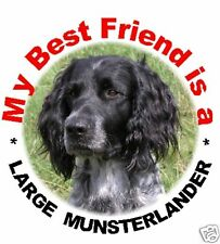 2 Large Munsterlander Car Stickers By Starprint