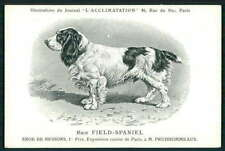 Field Spaniel Dog breed original old c1910s L'Acclimatation postcard