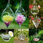 Clear Flower Hanging Vase Planter Terrarium Container Glass Home Wedding Decor
