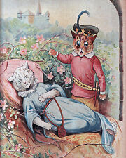 Louis Wain Sleeping Beauty Fun Cat Painting Hoffman Real Canvas Art Print