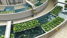 Hydroponics Aquaponics CD Aquaculture Soilless Growth Raising Plants Fish 80 bks
