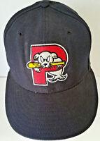 Vintage Portland Sea Dogs Hat Minor League Baseball Wool Sz 6 7/8 Cap New Era H3