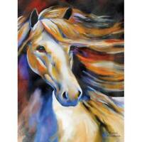 Marcia Baldwin 21056 WIND II 6x8 Canvas Horse Wall Art in Gift Box