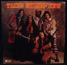 TRIBE-Ethnic Stew-Soul Psych Funk Rock Album-ABC RECORDS #ABCX 807